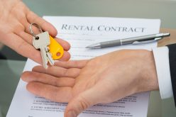 The reasons young professionals rent